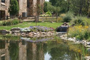 Landscape Design Littleton