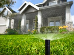 Sprinkler System & Irrigation System Services for Homes in the Denver Metro Area