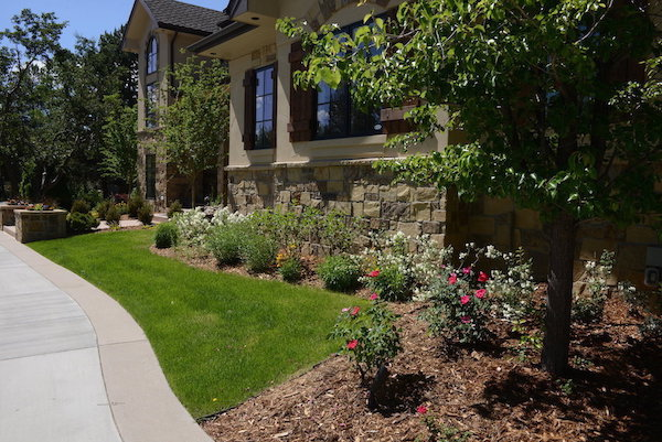 Sprinkler System Installation in Denver, CO